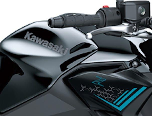 Kawasaki Z650L body