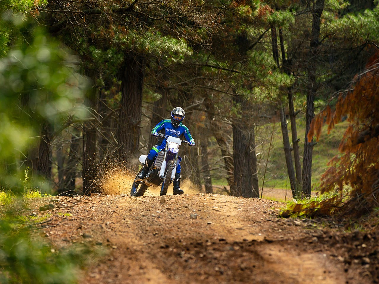 Yamaha WR250F in action on off road track