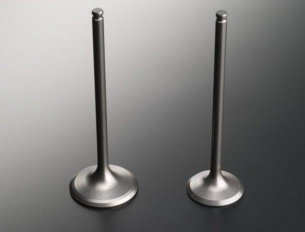 SUZUKI HAYABUSA titanium valves