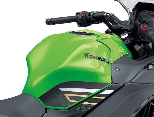 Kawasaki Ninja 650L SE fuel tank