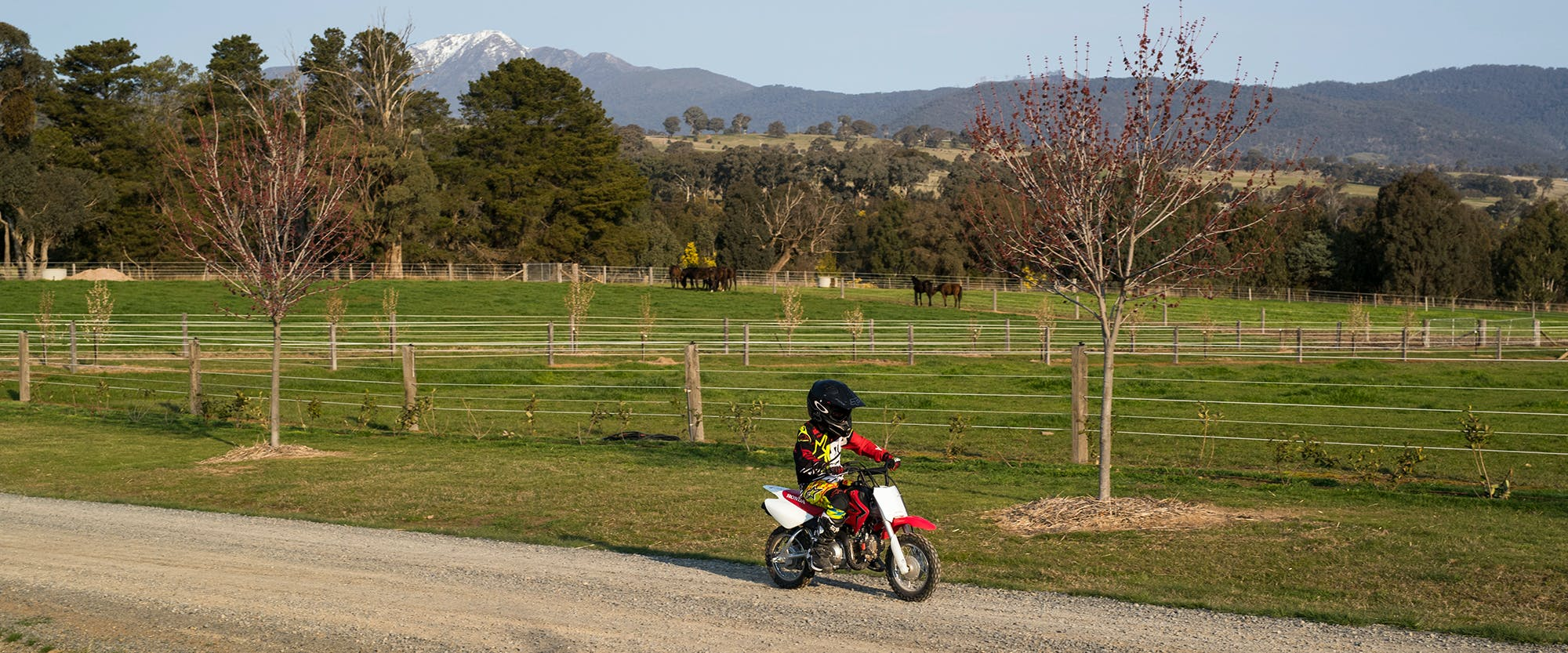 Honda CRF50F in extreme red colour being ridden on off road track