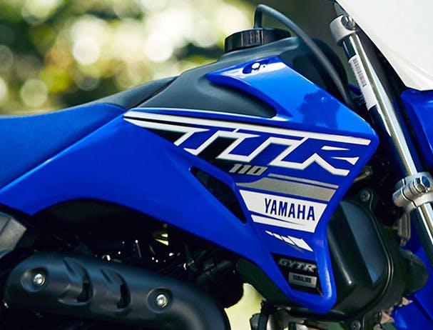Yamaha TT-R125LWE fenders and tank panels