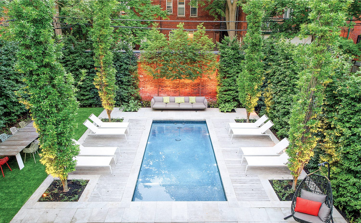 Backyard swimming pool surrounded by cedars