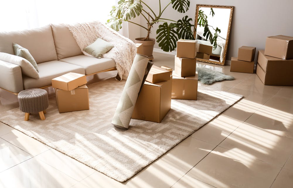 Living room with packing boxes