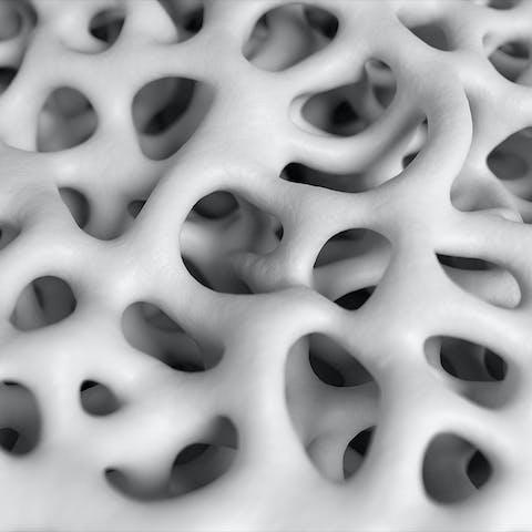 close up up chalk fibers