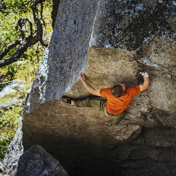 Nalle climbing an overhung boulder
