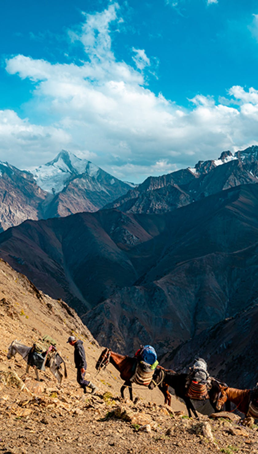 Trekkers on a mountain trail