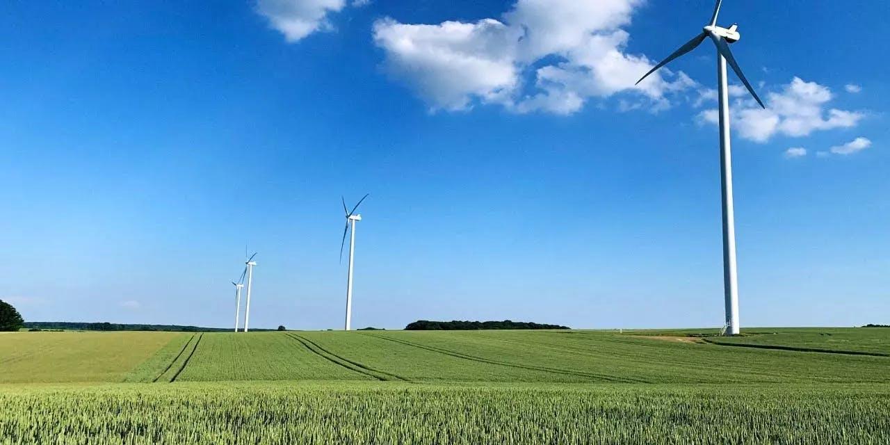 Cover Image for ESG: Preparando empresas para a nova realidade