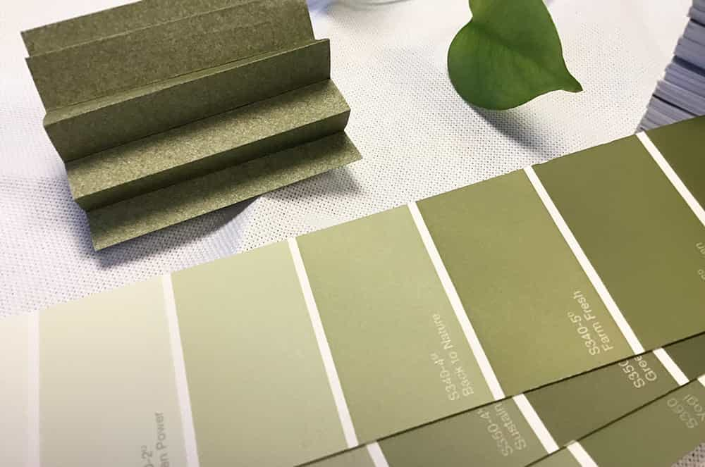 Sage green paint swatches next to a sage green cellular shade fabric sample.