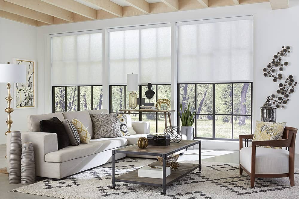 modern living with wall of large windows covered with white roller shades