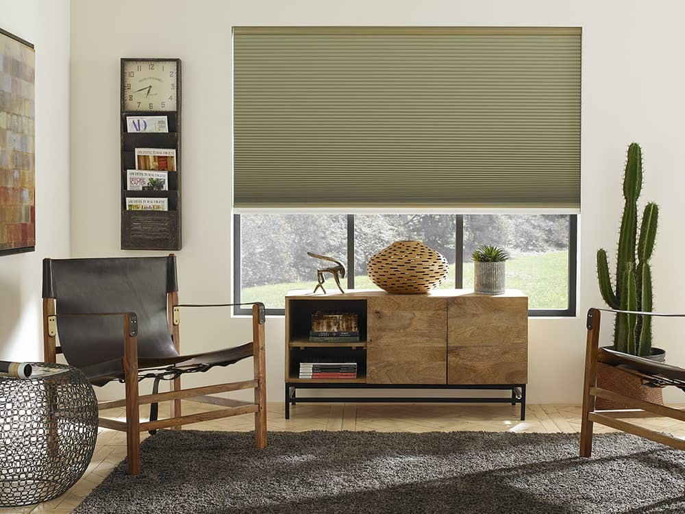 modern living room with sage green cellular shades