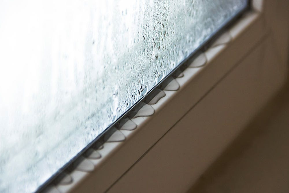 Condensation pools on a window ledge.