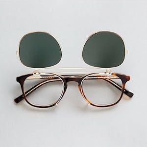 clip sunglasses