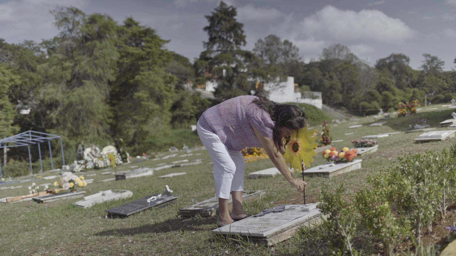 Norma Trujillo, amiga de Regina Martínez, Veracruz, asesinato,