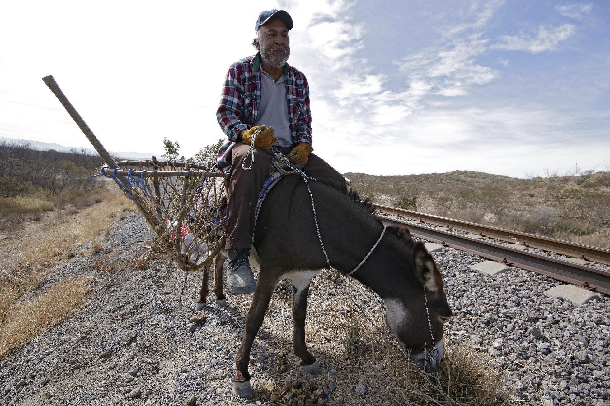 Un hombre monta un burro. El se dedica a recolectar chatarra a un lado de las vias.