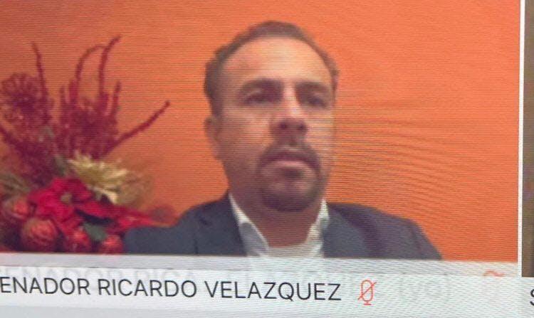 Ricardo Velázquez, senador, corrupción, simulación en sesión dle Senado virtual