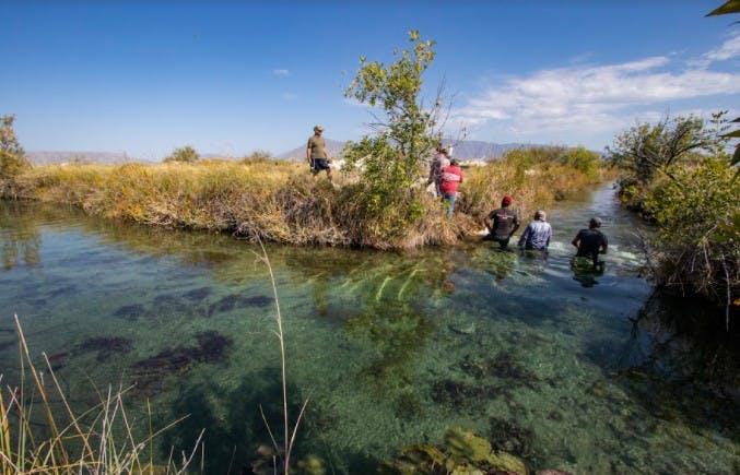 Ambientalistas colocan piedras para reducir el flujo de agua en el canal Saca Salada.