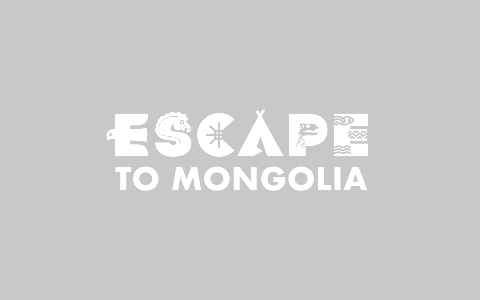 Getting around Mongolia