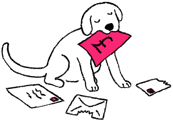 Dog chewing the mail