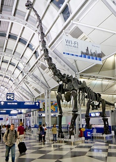 O'Hare Airport (ORD)