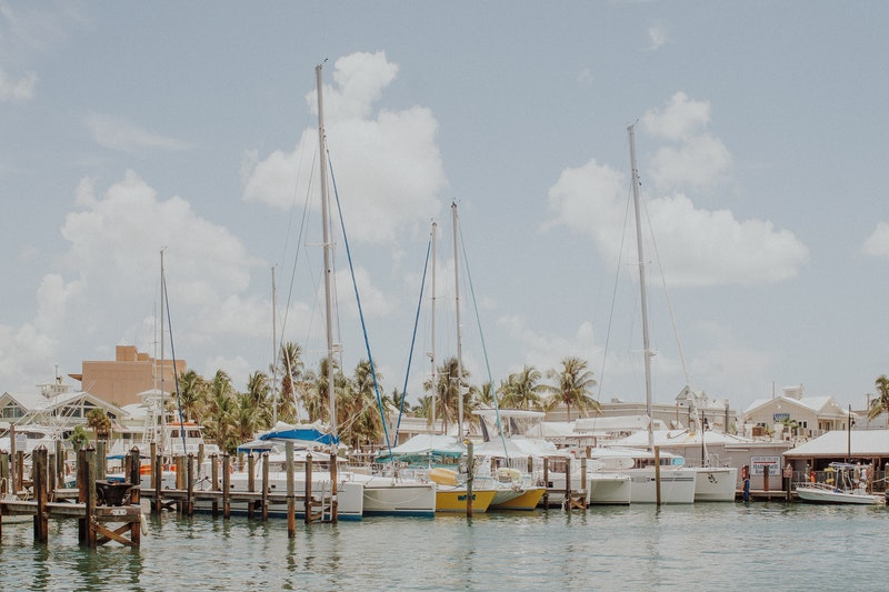 sailboats docked in harbor