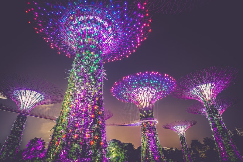 lighted towers at Gardens by the Bay in Singapore
