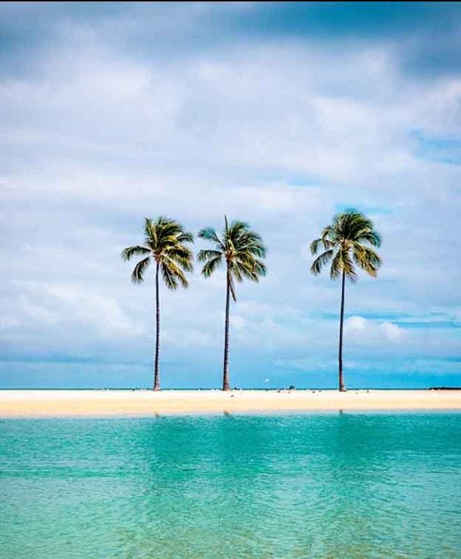 Consignación de Equipaje en Waikiki