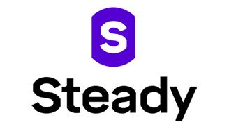 Steady company logo