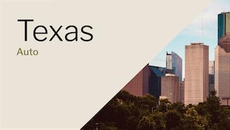 Houston, Texas skyline on a sunny day
