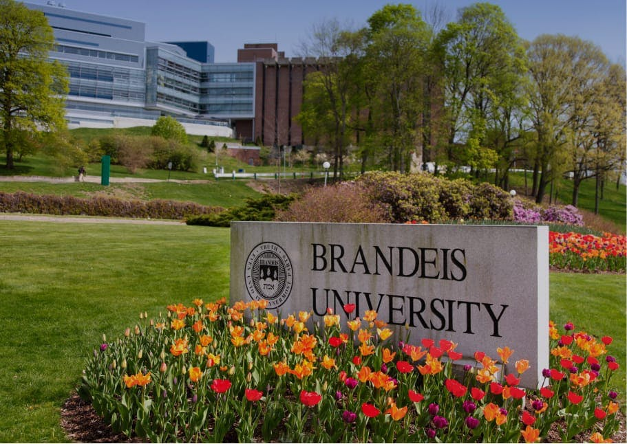 Decorative: Brandeis University campus