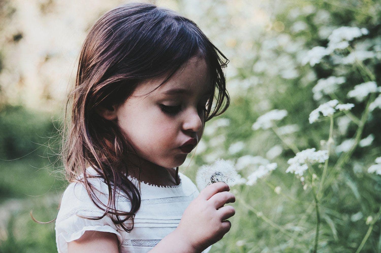 A little girl blowing on a dandelion.