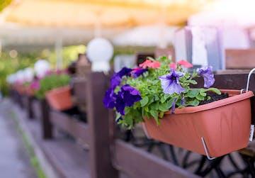 jardiniere balcon
