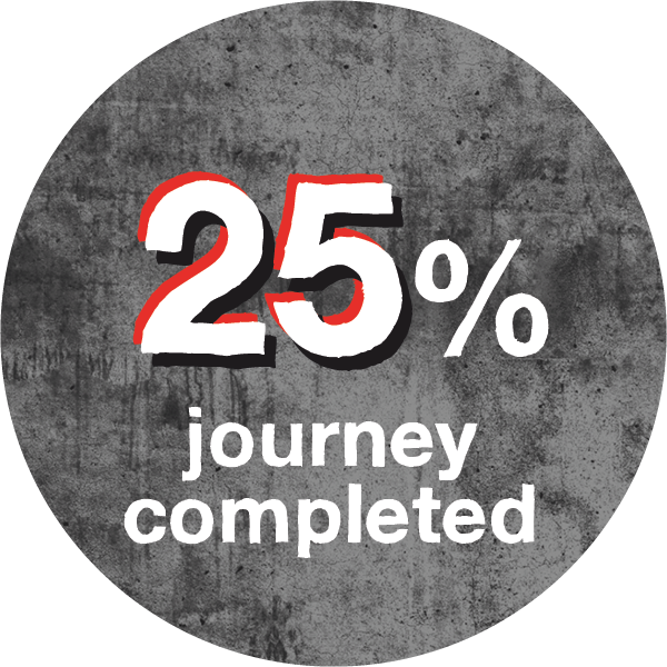 25% journey completed
