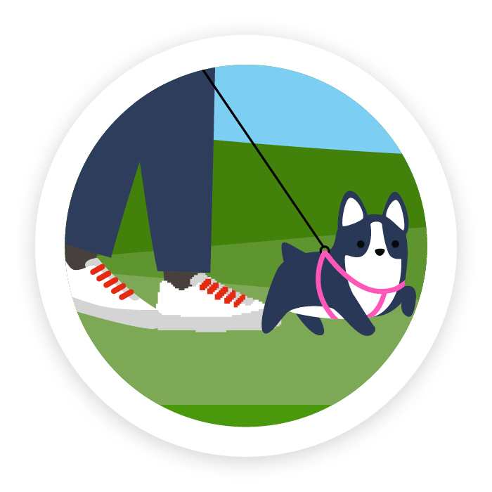 Icon of a dog being walked