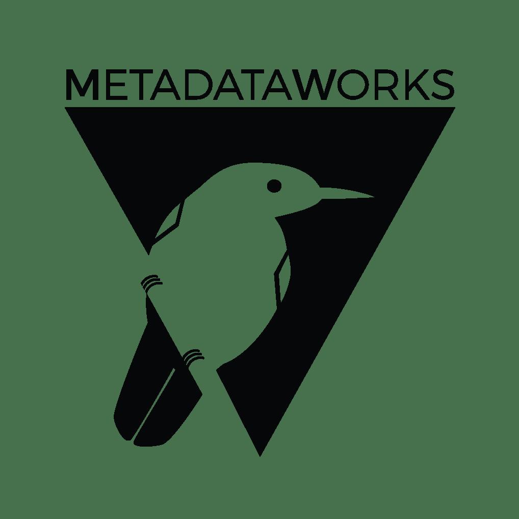 MetadataWorks logo