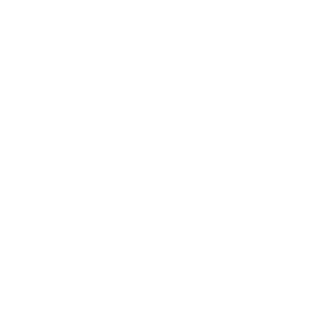 S11 Bar logo