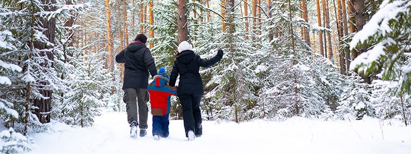 Family walking outside in snow covered trail in forest