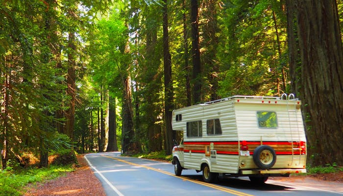 RV driving through a forest