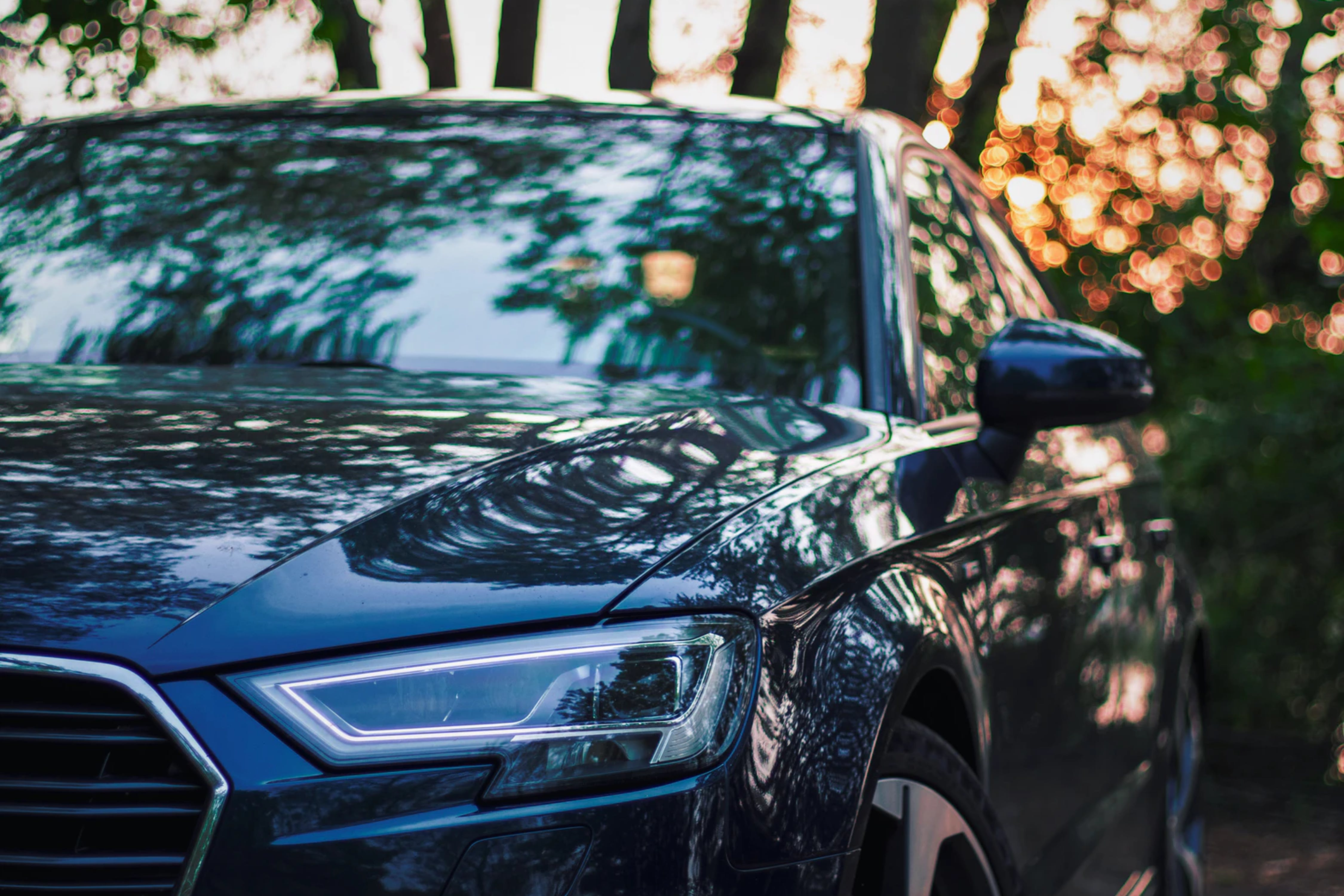 A black car stays under trees