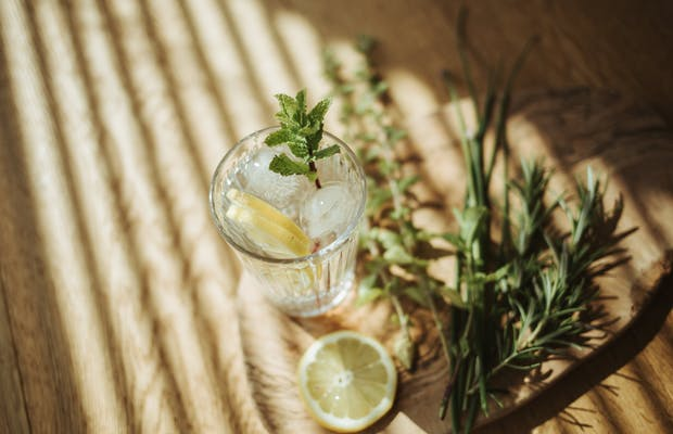 cabindinner montafon sommerurlaub kräuter drink hochbeet
