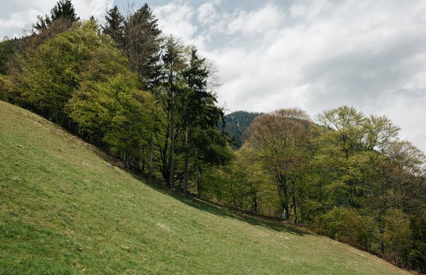 Montafon Sommerurlaub Wandern St. Gallenkirch