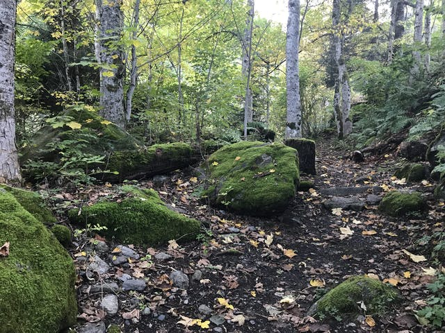 montafon wandern sommerurlaub st gallenkirch
