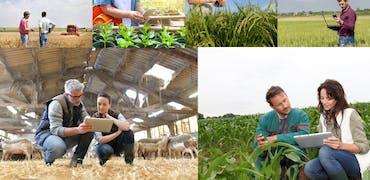 Agriculture : 10 métiers à plus de 50 000 euros