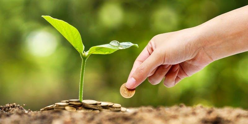 Finance responsable : vers des métiers plus éthiques ?