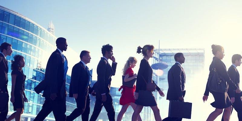 Des perspectives très variées pour les jeunes diplômés dans l'Audit-Conseil