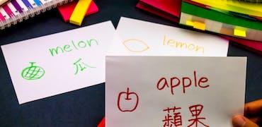 Parler plusieurs langues : un atout pour votre attractivité professionnelle