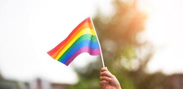 LGBT+ : faut-il en parler en entretien d'embauche ?