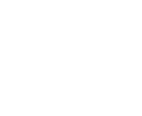 Campbell Consulting Group