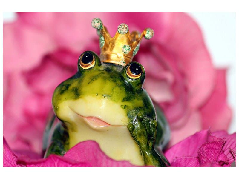 Leinwandbild Der Froschkönig