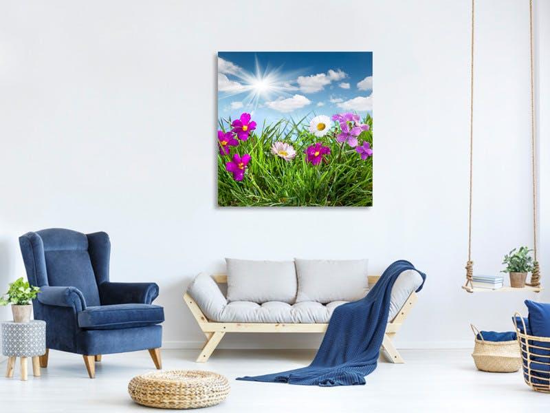 Leinwandbild Blumenwiese